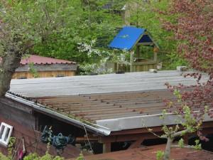 Carportdach eingerahmt von grün