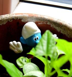Gärtnerschlumpf macht seine Aufgabe hervorragend
