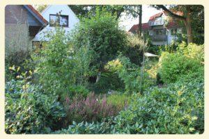 Finde das Haus--- mein Vorgarten